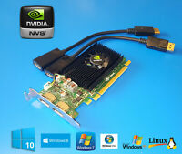HP Compaq Elite 8000 8100 8200 8300 SFF Video Graphics Card with Dual HDMI