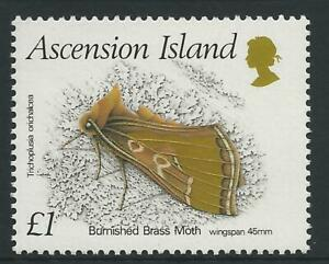 Ascension Island 1988 Insects Burnished Bass Moth £1- MUH
