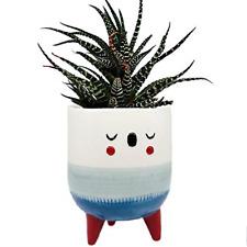 5.6 Inch Ceramic Plant Pot - Cute Face and Small Legs Design Decorative Glazed