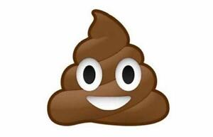 Emoji poop poo funny giant vinyl wall car decal sticker 5 sizes bedroom bathroom