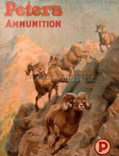 ANTIQUE SHEEP HUNTING REPRO 8X10 PHOTOGRAPH PRINT PETERS AMMUNITION ADVERTISING