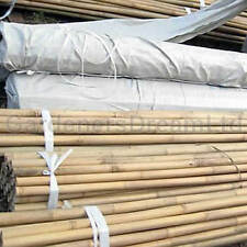 More details for 2ft 3ft 4ft 5ft 6ft 7ft 8ft bamboo garden canes strong thick quality support