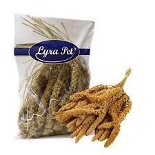 1 kg Kolbenhirse 1000 g gelb Körner Vogelfutter Kanarien Sittiche Lyra Pet® TOP
