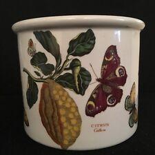 Rare Vintage Portmeirion Botanic Garden - Citrus - Citron - Planter
