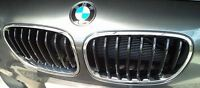 NEW GENUINE BMW 1 SERIES F20 F21 12-15 FRONT SPORT LINE KIDNEY GRILLE LEFT+RIGHT