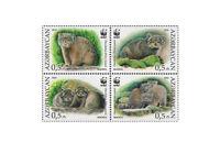 Azerbaijan Manul Wild Cats WWF Animals Fauna Tiere Katzen 2016 4 MNH stamps set
