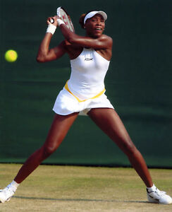 VENUS WILLIAMS USA WOMENS TENNIS 8X10 SPORTS PHOTO (N)