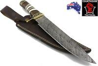 Handmade Bowie Knife Damascus Blade Walnut Wood Bone Brass Handle Leather Sheath