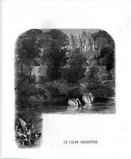 Stampa antica STAGNO CON ANATRE E CIGNI davanti ad un castello 1866 Old print