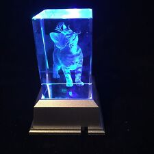Cat, Kitten - 3D Laser Etched Crystal Block With Light base
