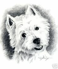 WEST HIGHLAND TERRIER Westie Dog Pencil Drawing 8 x 10 ART Print Signed DJR