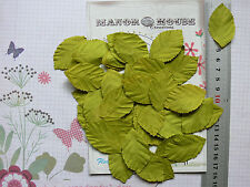 LEAVES Light GREEN LARGE x 40 Pack Paper - 48mm long x 28mm wide Manor House