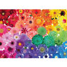 1000 Piece Rainbow Flowers Jigsaw Puzzles For Adults Kids Learning Education