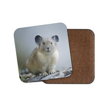 Cute Pika Coaster - Rabbit Yellowstone Wild Animal Nature Awesome Gift #16439