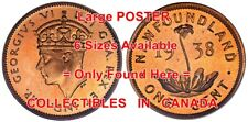 """KING GEORGE VI 1948 Penny NEWFOUNDLAND Flower = POSTER Coin 6 SIZES 17"""" - 7 FEET"""