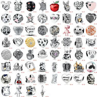 European 925 Silver Charm Bead Jewelry Fit Silver Bracelet Chain Bangle Necklace