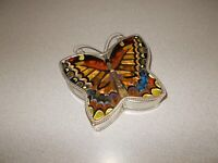 Butterfly jewelry trinket box hand painted glass hinged lid Amia Studios