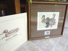 Framed First Texas Duck Stamp Print Mallards 1981 Larry Hayden 14679 / 16500