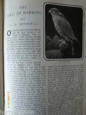 Rare Birds Prey Gos Hawk Eyas Falcon Dr Barnardo's Children Charity Canada 1904
