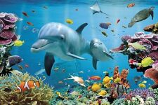 Dolphin Reef Poster Coral Sea Life Tropical Fish Art Print 24x36