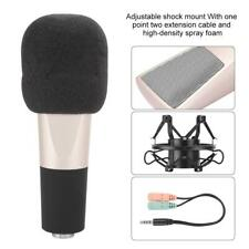 Professional Audio Condenser Microphone Mic Set Studio Sound Recording Bracket