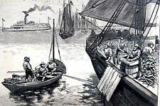 Bar Harbor Maine 1884 Mackerel Fishing Boat Fish Fishermen Antique Engraving