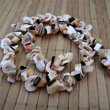 Muschel Perlen *Kegelfechterschnecke* Spiral-Nuggets 10mm Schnecke Naturprodukt