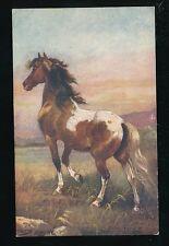 Artist HARRY PAYNE Horses Bronchos of the Prairie Tuck Oilette #9138 PPC 1921