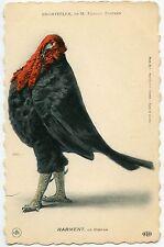 Spectacle. Théatre. Chantecler of M.Edmond Rostand. Harment. Turkey