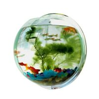 Wall Mount Fish Tank Hanging Aquarium Mounted Plant Bowl Bubble Acrylic Home Pot