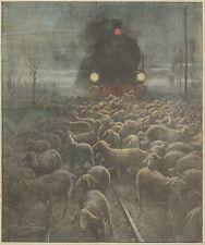 K0827 Sulla Milano-Alessandria Treno investe gregge di pecore - Stampa antica