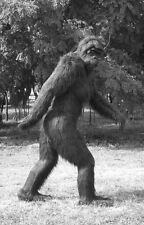 Framed Print - Freaky Weird Bigfoot/Sasquatch Creature (Picture Poster Monster)