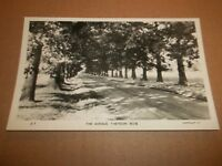 THE AVENUE , THEYDON BOIS ( EPPING ) B&W REAL PHOTO POSTCARD UNPOSTED EXCELLENT