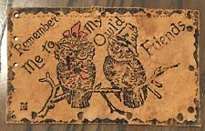 Remember me to my Owl'd Friends Leather Postcard 1906 era two owls