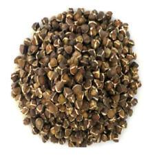 20 Semi di Moringa Oleifera. L'albero che purifica,che nutre,che guarisce