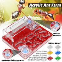 Acrylic Ant Farm Nest Formicarium Housing for Ants Colony Living Work House Kids