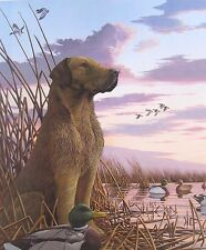 Labrador Retriever Duck Hunting Landscape by John Akers (Signed & Numbered)
