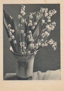 Maiglöckchen-Vase ngl E1170