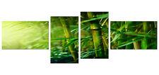 4 teiliges Bild auf Leinwand als Kunstdruck (55 x 166 cm HxB) Bambus modern