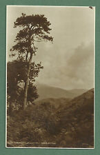 """C1930'S RP PC """"THE MOUNTAIN SENTINAL"""" ABOVE ARTHOG, CARDIGANSHIRE"""