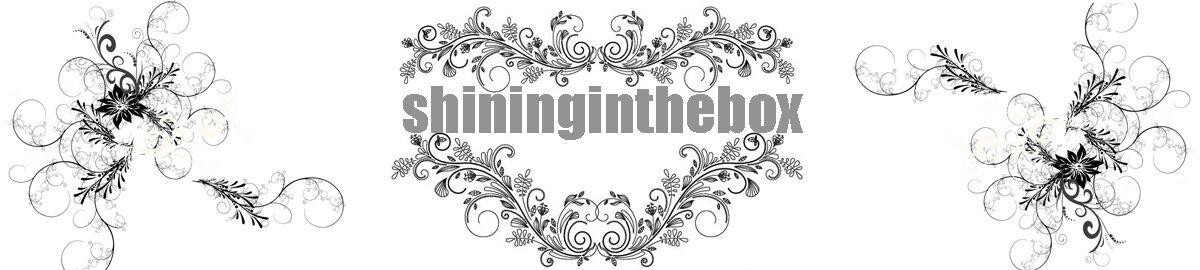 shininginthebox