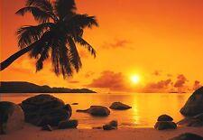Fototapete SD316 Sunset - 368 x 254 cm - keine Lieferkosten - exklusiv