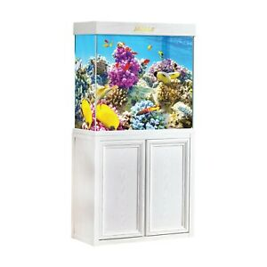50 Gallon Fish Tank with Premium Tempered & Ultra Transparent Glass (Complete Aq