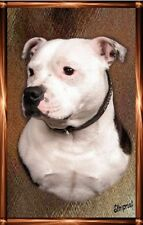 Staffordshire Bull Terrier A6 Blank Card 5 by Starprint