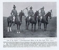 NEW SOUTH WALES LANCERS NCO'S - ANTIQUARIATO fotografica stampa 1896
