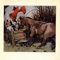 HUNTING FOX HORSE STOPS FOR FENCE CATAPULTING RED COAT HUNTER OFF HORSE HUNT FOX
