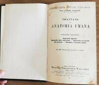 Trattato di anatomia umana vol. 2 - C. Falcone - Francesco Vallardi - 1931 - AR