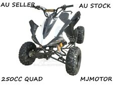 250CC SPORTS ATV QUAD BUGGY 4 Wheeler MOTOR BIKE MANUAL GO KART TRIKE DIRT BIKE