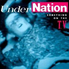 Undernation/something on the TV (> Martin Bisi) VINILE