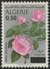 ALGERIE N°598** Fleurs, rose, 1975 Algeria Flowers MNH